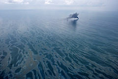 Oil was spilled into the Gulf of Mexico after the Deepwater Horizon explosion. Thursday's explosion did not cause a leak, but it did reignite fears about drilling. (Creative Commons)