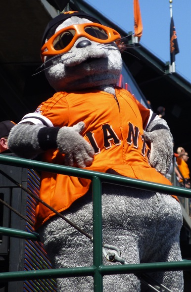 Real Housewife of San Francisco Lou Seal. (Creative Commons)