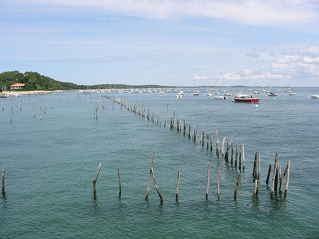 Oyster parks, somewhere near Cap-Ferret, Bassin d'Arcachon, France (Philippe Teuwen / Flickr)