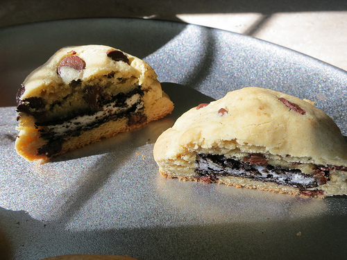 This isn't your average, run-o-the-mill cookie. (Shannon Dosemagen/Creative Common)