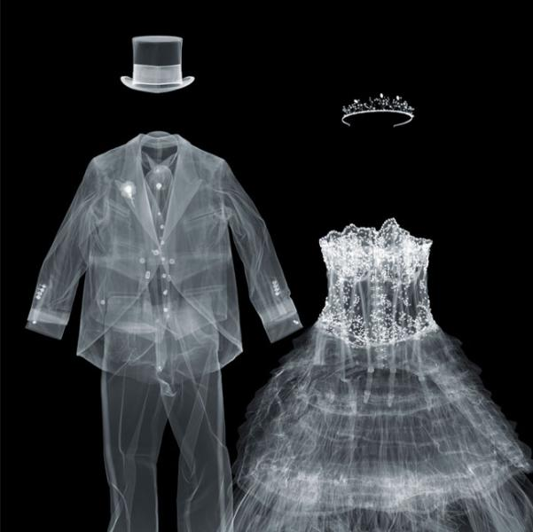 Christmas Wedding Dress X Ray