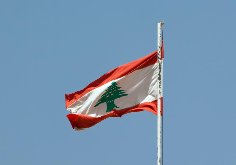 Lebanese protesters waved their national during the rally, encouraging government officials to stop supporting Syria (Eusebius, Creative Commons)