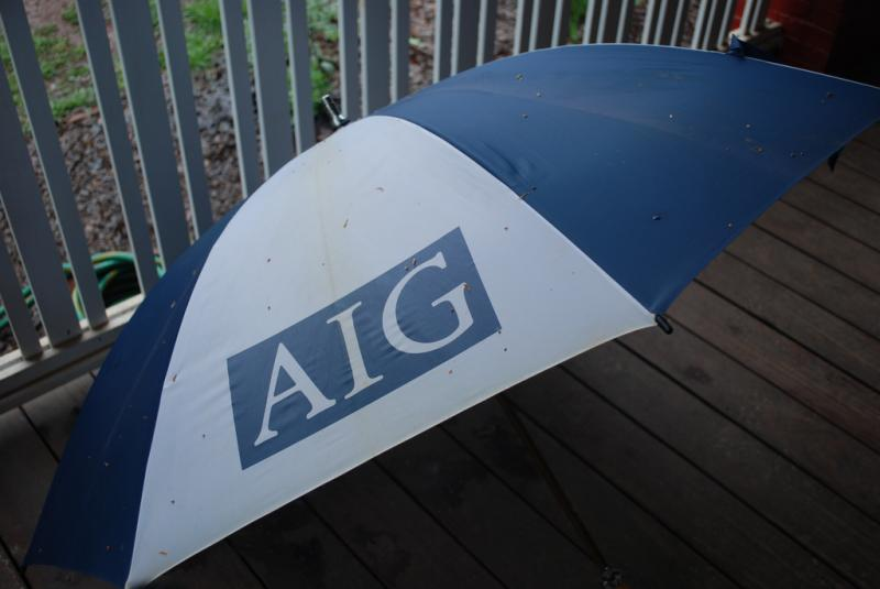 AIG is suing the government because of the onerous terms of its bailout...? (Mindy Georges, Creative Commons)