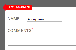 Too often, people leave anonymous comments on online publications. (Screenshot)