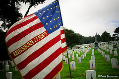 Unlike Veterans Day, which honors all soldiers, Memorial Day honors those who died in service of their country (Courtesy David Yu)
