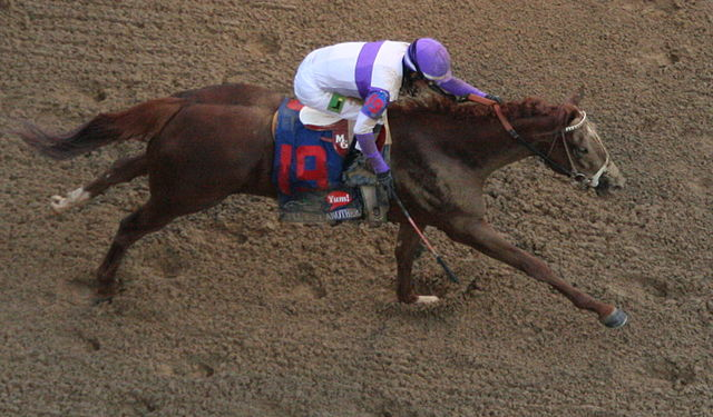 I'll Have Another, here crossing the finish line in the Kentucky Derby, will miss the Belmont Stakes due to a leg injury (Kentucky National Guard Public Affairs Office/Wikimedia Commons)