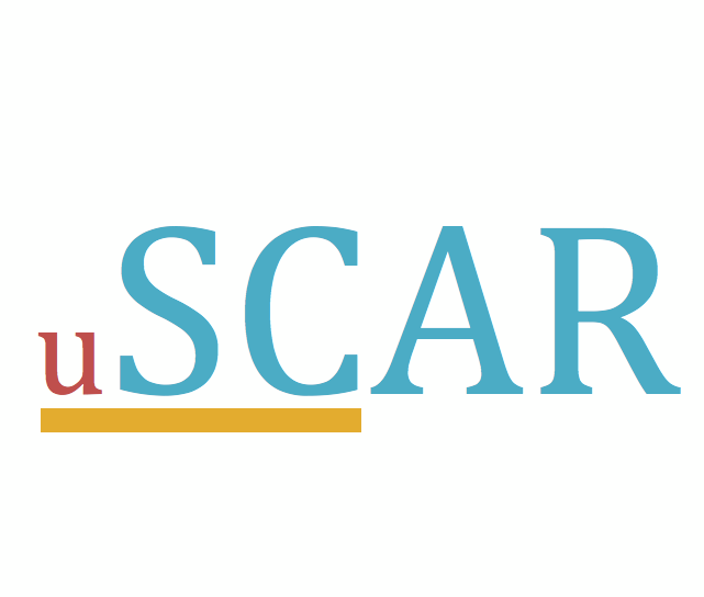 USC SCAR's priority is the support of those who have experienced sexual violence. (USC SCAR)